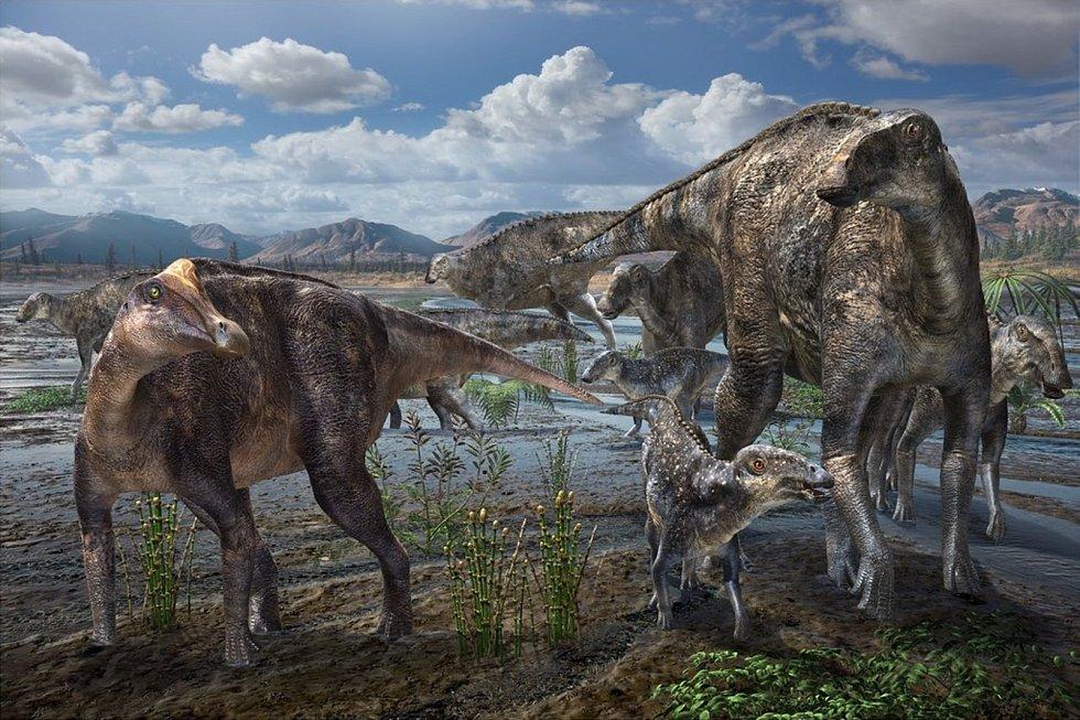 Umělecké zobrazení dinosauřích obyvatel Aljašky. Na snímku jsou hadrosauři.