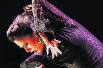 """""""V České republice budu mít premiéru. Měla jsem ohromnou chuť tuto zemi poznat,"""" říká Belén López, pro niž je  flamenco inspirací i životním stylem."""