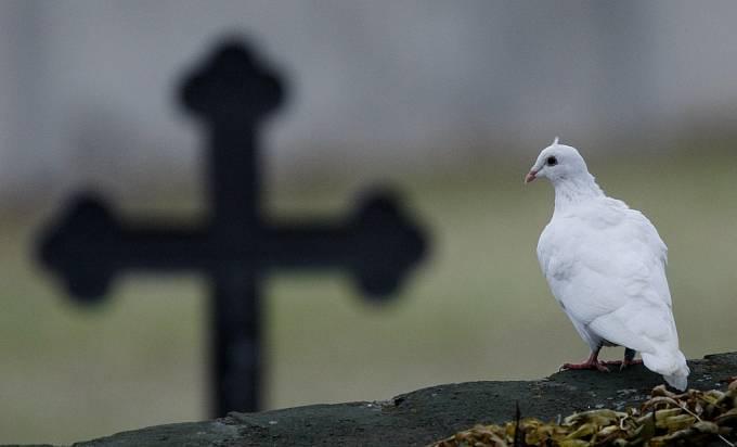 O dušičkách na hřbitově rozhodně nebývá prázdno.