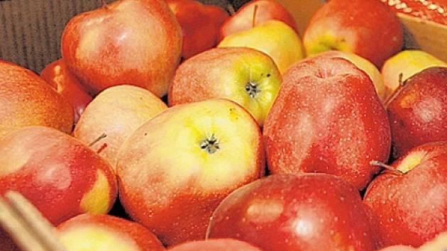 Jablka často prohlížejte, poškozená hned vyhoďte.