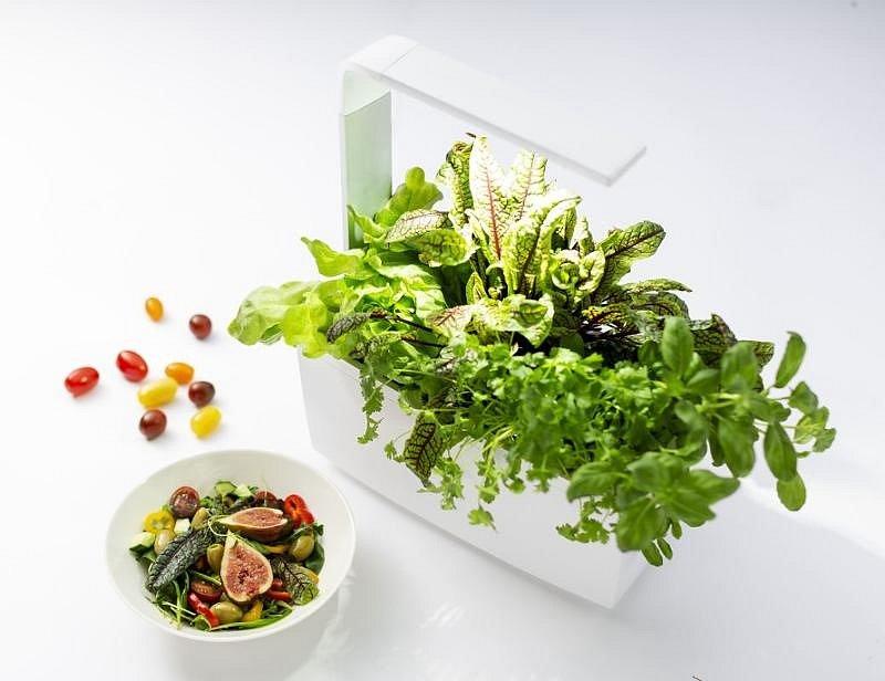 Pokud chcete mít doma čerstvé bylinky a nemáte čas a chuť se o ně starat, nebo nemáte podmínky pro jejich pěstování, může vám pomoci chytrý květináč.