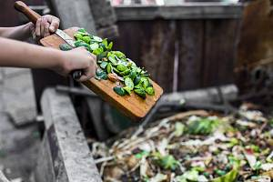 Na kompost patří nejen zbytky z kuchyně, ale třeba i shrabané listí.