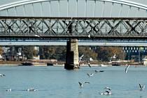 Bratislavané mají šanci do konce měsíce navrhnout, jak se má vlastně jmenovat most přes Dunaj v centru slovenské metropole, který sice z tradice nese název Starý most, ale ve skutečnosti je nejnovějším v hlavním městě.