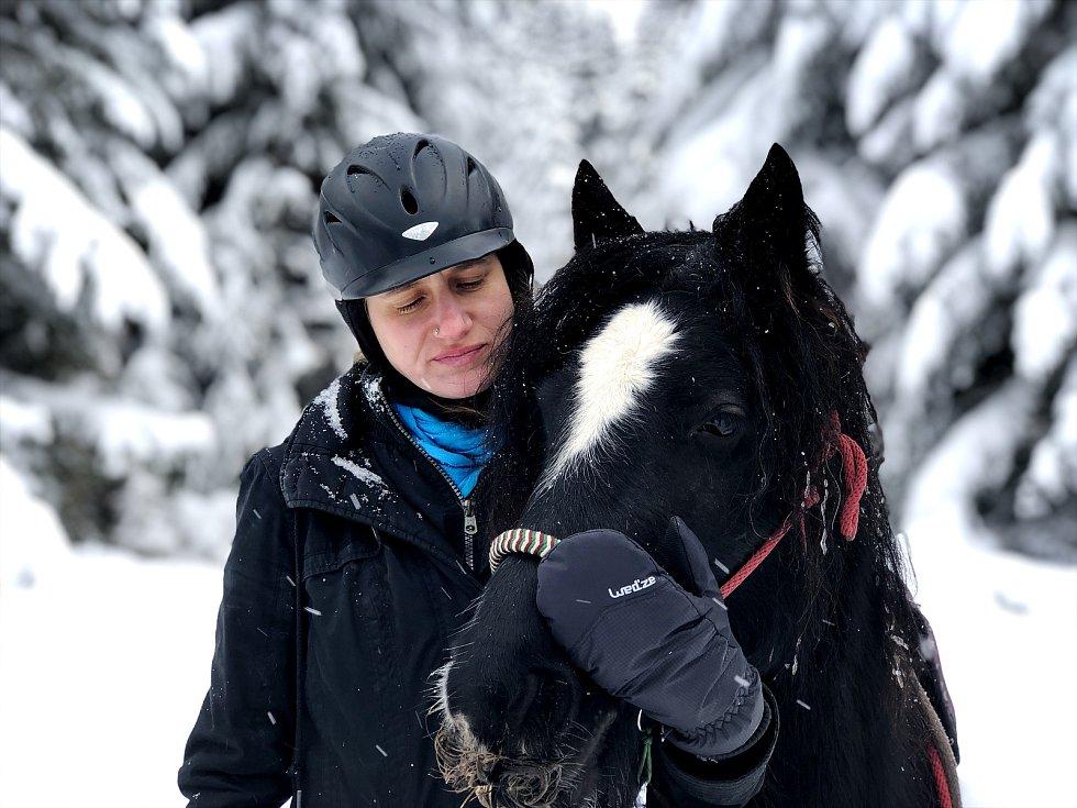 V Jelení se kromě lam chovají také koně.