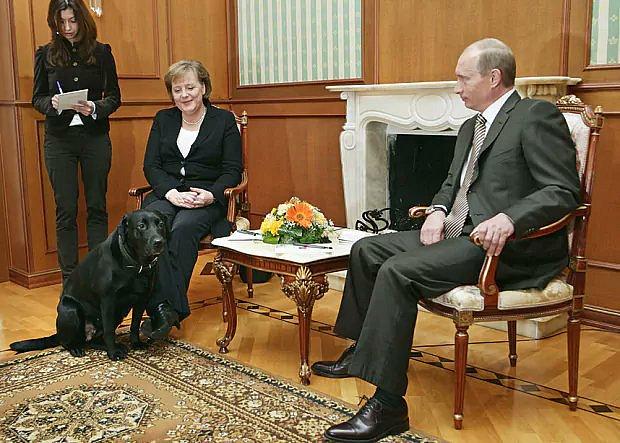 Vladimír Putin a jeho láska ke psům. Setkání s Angelou Merkelovou v Soči.