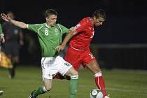 Milan Baroš se snaží obejít severoirského reprezentanta Bairda.