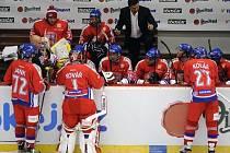 Čeští hokejisté v přípravě