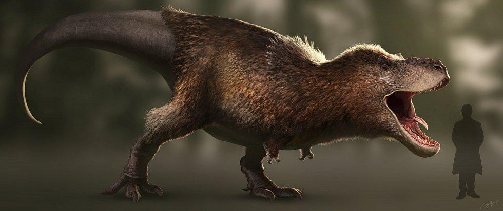 Moderní rekonstrukce opeřeného Tyrannosaura rexe.