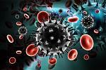 Virus HIV/AIDS, ilustrační foto.