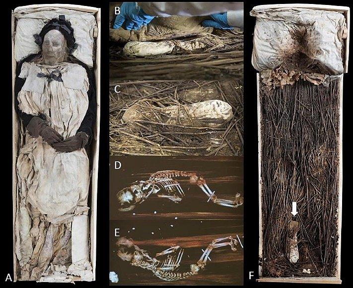 Uložení těla zesnulého Pedera Winstrupa v rakvi a místo, kde spočíval balíček s plodem