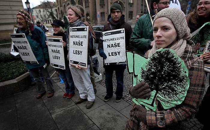 Hnutí Duha pořádalo 19. ledna před Úřadem vlády v Praze demonstraci, na které požadovalo zrušení tendru státních lesů.