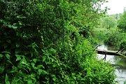 Národní přírodní rezervace Křivé jezero