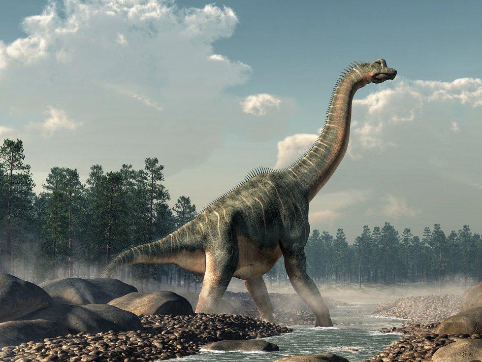 Tito býložraví dinosauři s dlouhým krkem dorůstali délky tří autobusů a při chůzi se pod nimi třásla zem. Vždy ale tak obrovští nebyli.
