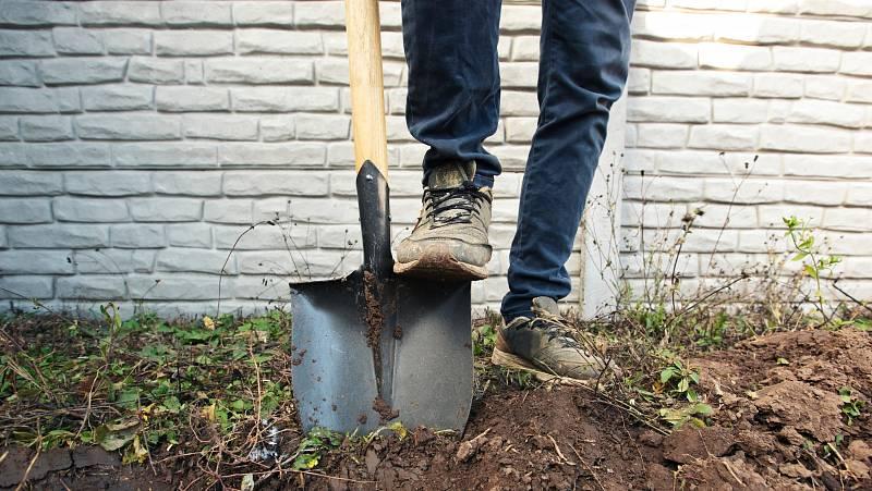 Než se pustíte do výsadby, musíte se postarat o záhony. Zbavte je plevele a zryjte hlavně ty s těžkou jílovitou půdou.