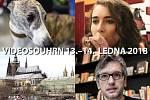 Videosouhrn Deníku – 13.–14. ledna 2018