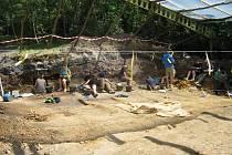 Přes deset milionů let stará zkamenělina nabízí nový pohled na lidskou evoluci