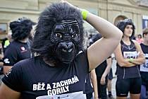 Charitativní akce Běh pro gorily se uskutečnila 15. června v Praze.