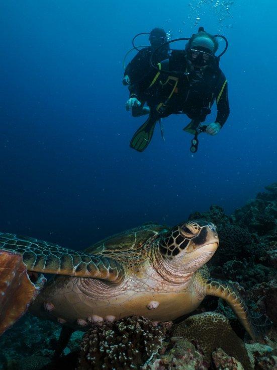 Kromě pořádání expedic Michal Guzi také fotografuje, mimo jiné i život pod vodou