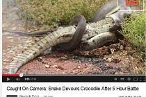 Na mobilní telefony natáčeli očití svědci boj na život a na smrt mezi krajtou a asi metr dlouhým krokodýlem u australského jezera Moondarra.