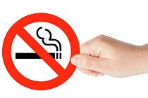 - Návrh na úplný zákaz kouření v restauracích od roku 2014 by měl dorazit k projednání do sněmovny do konce letošního roku.