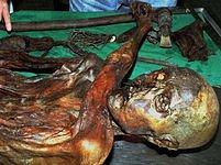Šestačtyřicetiletý 159 centimetrů vysoký pravěký muž zemřel během boje.