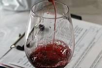 Víno, alkohol - ilustrační foto