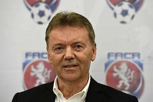 Bývalý místopředseda Fotbalové asociace ČR Roman Berbr