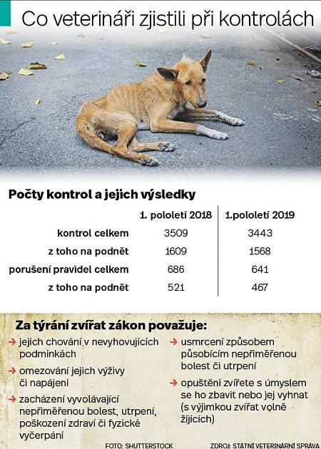Týrání zvířat - Infografika
