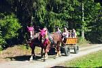 Naučná stezka provede děti i dospělé přírodním parkem Zelenov. Okruh dlouhý deset kilometrů ukáže ta nejzajímavější místa parku.