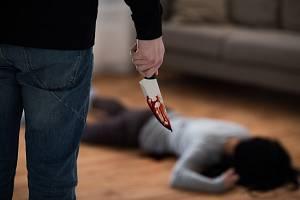 Nejnovější výzkumy odhalily další temnou stránku pandemie. Rekordně narostl počet vražd a domácího násilí.