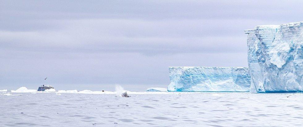 Ledová kra A68 čtyři roky putovala Atlantickým oceánem.