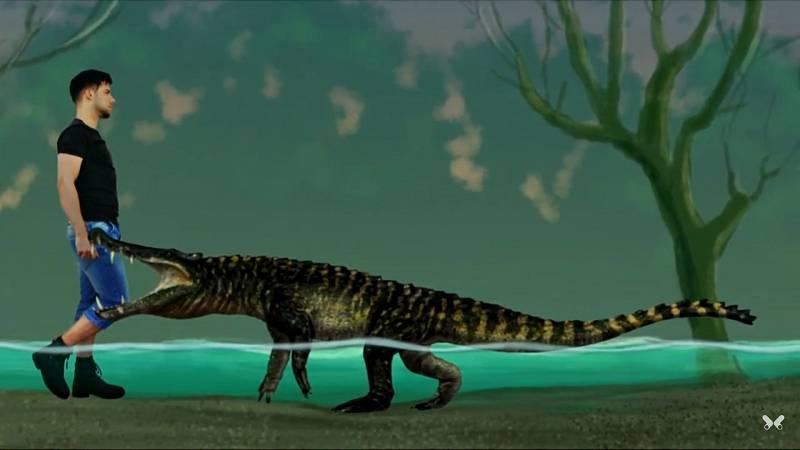 Dalším pravěkým předchůdcem krokodýlovitých dravců byl Kaprosuchus