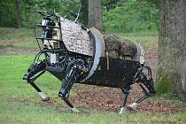 Roboti Denver Dynamics