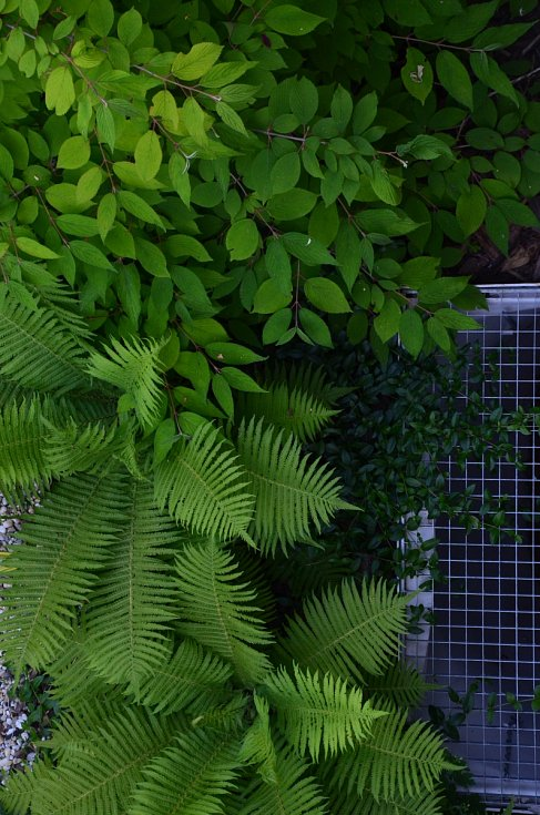 Brněnská zahrada atelieru Partero