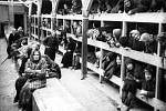 Vězni v Auschwitzu