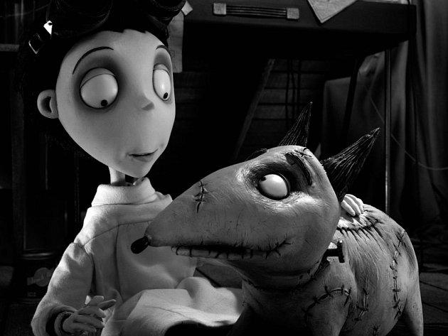 FRANKENWEENIE. Victor a jeho největší životní přítel, pes Sparky. Další Burtonova okouzlující animovaná podívaná.