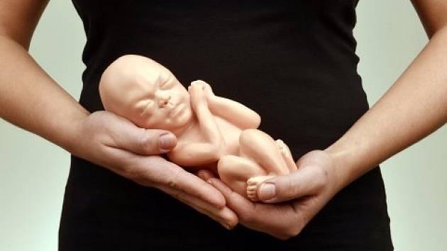 Dítě, zárodek - Ilustrační foto