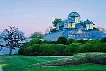 Královský skleník je naprosto úžasná stavba. Uvidíte v něm rostliny z celého světa, některé tu jsou už od konce 19. století.