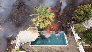 Smutné záběry z La Palmy: sopka uvěznila psy, poslední šancí pro ně má být dron