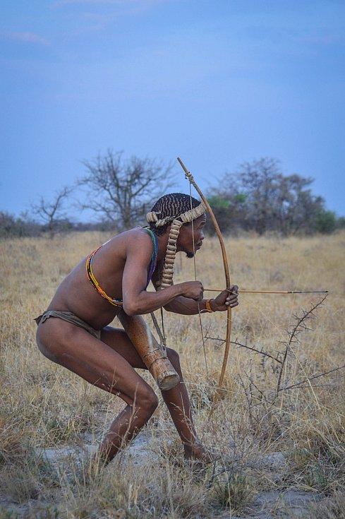 Křovák s lukem a šípy na lovu v buši