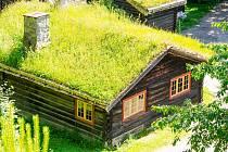 Zelené střechy.