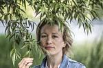 Jako představitelka psycholožky Jany Chládkové je Helena Dvořáková známá ze seriálu Kriminálka Anděl (2008–2014). Zahrála si také vseriálu Život a doba soudce A. K. (2017) nebo ve filmech Stínu neutečeš (2009), Colette (2013) či Modelář (2020).