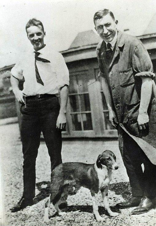 Frederick Banting a Charles Best s jedním z psíků, jejichž slinivka jim pomohla vyřešit problém cukrovky