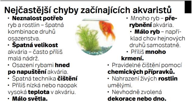 Akvarijní ryby - Infografika