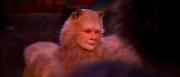 Judi Dench patří k velkým tahákům filmu.