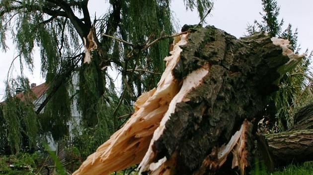 Větrná smršť řádila včera odpoledne v Černilově na Královehradecku.