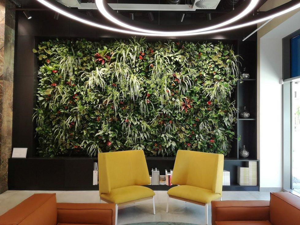 Rostliny nemusíte pěstovat jen v květináči. Na zdi obývacího pokoje, kuchyně nebo ložnice si můžete vytvořit malou vertikální zahradu v podobě obrazů z živých rostlin.