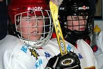 Lední hokej ženy - ilustrační foto