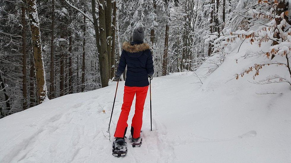 Kudržení rovnováhy na sněžnicích, zvláště vhlubokém sněhu, použijte trekové hůlky, běžkové jsou příliš dlouhé.