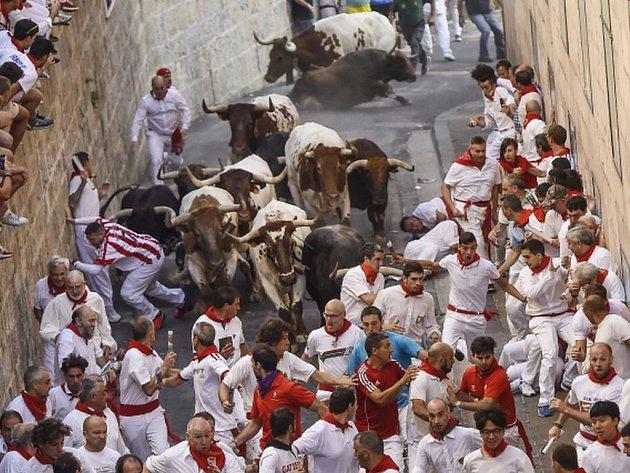 Zranění nejméně 13 osob si dnes vyžádal první z osmi běhů s býky, které se konají v rámci tradičních oslav svátku svatého Fermína v severošpanělské Pamploně.